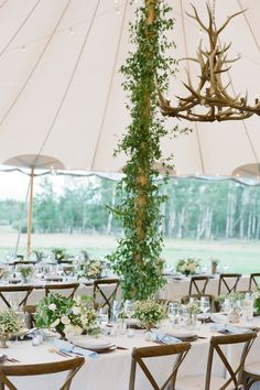 """From the editorial """"An Upscale Rustic Wedding With the Cutest Escort Card Idea You'll Want to Steal."""" Lush green vines crept up the tent poles into the antler chandeliers and string lights criss-crossed above. The modern table settings by XOWYO lent an organic elegance to the romantic white and green arrangements and cups of wild grasses on each table. Head to SMP for this summer wedding's full gallery! Photography: @carrie_patterson Wedding Reception Lighting, Rustic Wedding Reception, Tent Wedding, Wedding Ceremony Decorations, Wedding Chairs, Rose Wedding, Garden Wedding, Small Wedding Decor, Wedding Ideas"""