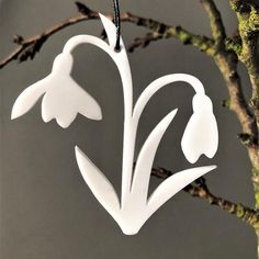 Creating a lovely spring feeling with your beautiful snowdrops🌱 Denmark, Danish, Urban, Christmas Ornaments, Feelings, Create, Holiday Decor, Spring, Flowers
