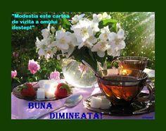 Lime flower and tea - Desktop Nexus Wallpapers Pause Café, Good Morning Friends, Lemon Balm, My Tea, Home Recipes, Organic Baby, Afternoon Tea, Decoration, Still Life