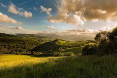 regram @pieronitiziano In giardino.  Scaldami ancora.  #acolazione #tuttoesaurito #tuscany #toscana #albettina #sunrise #valdorcia #toscanodocg #siena #landscape #minimal #green #collinetoscane #travel #usa #love #natural #naturallight #theglobewanderers #theheavenearth #italianlandscapes #discovertuscany #tesorodisiena