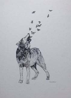 Wolf and Butterflies Original Drawing - Ink on Paper - Original Animal Art - Animal Drawing - Hand Signed - Best Picture For diy For Your Taste You are looking for something, and it is going to tell you ex - Wolf Tattoos, Lion Tattoo, Cute Tattoos, Small Tattoos, Body Art Tattoos, Wolf Pack Tattoo, Sleeve Tattoos, Coyote Tattoo, Tatoos