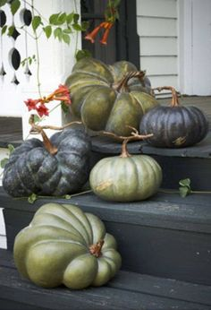 It's Halloween week! So it's pumpkin time.Trendy Thanksgiving Pumpkins - Maria Killam - The True Colour ExpertDecorating with natural touches and items brings a peaceful feel to your home. Here are gorgeous ideas for natural yet spooky Halloween deco Fall Pumpkins, Halloween Pumpkins, Fall Halloween, Halloween Decorations, White Pumpkins, Halloween Porch, House Decorations, Park Hill Collection, Green Pumpkin