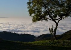 Above the clouds- this viewpoint above the clouds could be pretty sweet- AirBnB- $205 per night