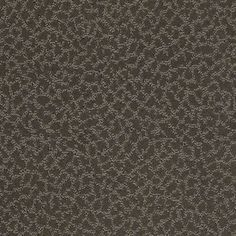 Color: 00506 Alaskan Musk CCS20 Capellini - Shaw Caress Carpet Georgia Carpet Industries
