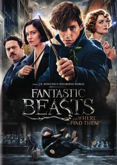 Rent Fantastic Beasts and Where to Find Them starring Eddie Redmayne and Katherine Waterston on DVD and Blu-ray. Get unlimited DVD Movies & TV Shows delivered to your door with no late fees, ever. One month free trial! Fantastic Beasts Poster, Fantastic Beasts And Where, Fantastic Beasts 2016, Credence Fantastic Beasts, Great Movies, New Movies, Crimes Of Grindelwald, Eddie Redmayne, Film Serie