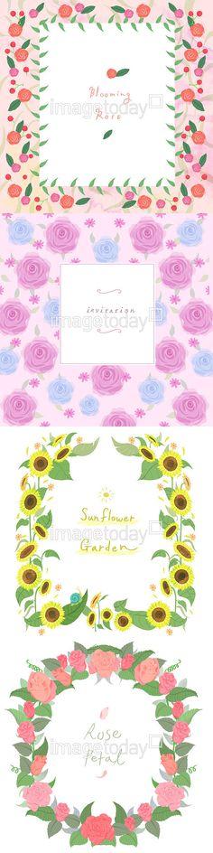 이미지투데이 일러스트 꽃 문자 백그라운드 분홍꽃 분홍색 식물 영어 자연 장미 장식 페인터 프레임 해바라기 사각형  파스텔 통로이미지 tongroimages imagetoday flower background illust illustration text pink plant english nature rose painter frame sunflower pastel