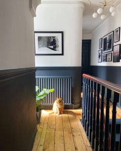Railings farrow and ball, hallway decor, entrance decor ideas Entrance Hall Decor, Hallway Ideas Entrance Narrow, Modern Hallway, Stairs And Hallway Ideas, Dark Hallway, Hallway Walls, Entrance Design, Style At Home, Victorian Hallway