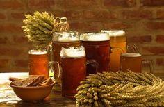 Alus, Latvian beer
