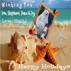 Feliz Navidad y Feliz Año 2018 Happy Holidays, Joy, Christmas Ornaments, Holiday Decor, Merry Christmas, Happiness, Happy Holi, Glee, Christmas Jewelry