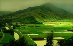 The Green's Beauty [1280X800]. #Followme #CooliPhone6Case on #Twitter #Facebook #Google #Instagram #LinkedIn #Blogger #Tumblr #Youtube