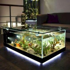 Glass Fish Tanks, Cool Fish Tanks, Aquarium Fish Tank, Amazing Fish Tanks, Glass Aquarium, Fish Tank Table, Fish Tank Coffee Table, Coffee Table Aquarium, Fish Tank Stand