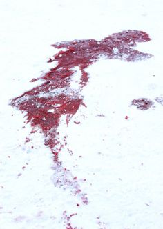 Blood in the snow.