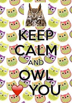 keep calm and owl loves you / created with Keep Calm and Carry On for iOS #keepcalm #owl