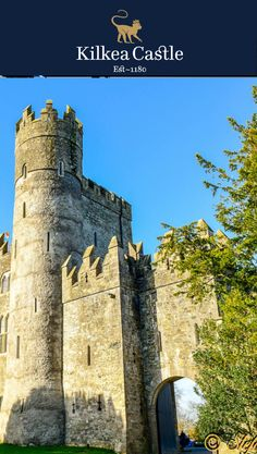 Always delightful to receive photos from our guests and see the Castle Grounds through their lens. #irishcastle #castle #ireland #exploreireland #visitireland