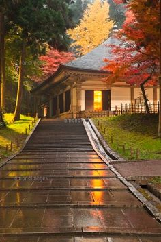 秋雨に濡れる平泉中尊寺金色堂。平泉の見所!