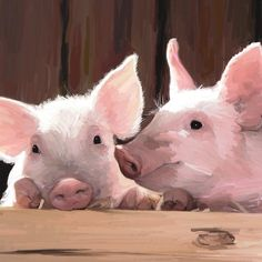 Two Pigs - Small 5.75x 5.75