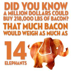 Did you know a million dollars could buy 218,000 pounds of bacon? That much bacon would weigh as much as 14 elephants!