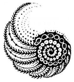 "Nautilus (shell) rubber stamp WM 2x2.25"""