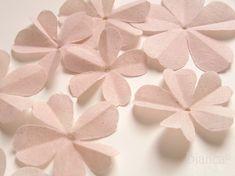 cut petals small