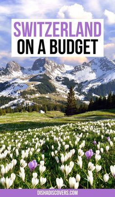 It's totally possible to travel to Switzerland on a budget despite it being an expensive country. Follow these simple money-saving tips and you'll see how it's possible to travel to Switzerland without blowing your budget. | Switzerland on a budget | Switzerland on a budget tips | Switzerland on the cheap | Switzerland budget travel | Switzerland budget | Switzerland travel on a budget | Switzerland travel | Switzerland travel tips | Europe Travel Guide, Budget Travel, Travel Guides, Europe Budget, Rome Travel, Switzerland Travel Guide, Places In Switzerland, Switzerland Tourism, Ways To Travel