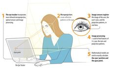 """Website Eye Tracking   Myth #1: """"Faces always & instantly draw attention."""" Myth #2:""""Large text instantly draws a lot of attention."""" Myth #3: """"The magical word 'FREE'"""