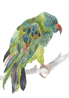 Blue-Naped Parrot - Original watercolor painting by Michelle Morin via etsy.
