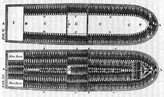 scheep met slaven