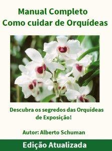 capa-orquidea