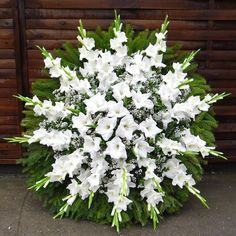 1 million+ Stunning Free Images to Use Anywhere Funeral Floral Arrangements, Creative Flower Arrangements, Tropical Flower Arrangements, Church Flower Arrangements, Tropical Flowers, Purple Flowers, Altar Flowers, Home Flowers, Funeral Sprays