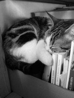 """I love falling asleep with a good book!"""