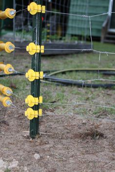 garden electric fence. Electric Fence To Keep Squirrels Out. Garden