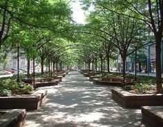 CIncinnati: Downtown Park