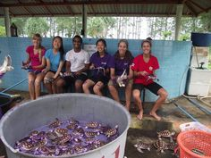 Happy faces but sad times.. Some #volunteers scrub #seaturtles for the last time. Thanks for all the hard work!