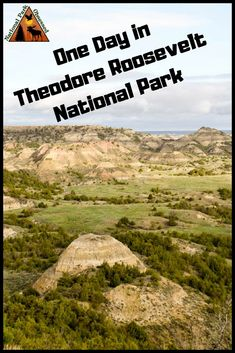 Teddy Roosevelt National Park North Dakota collectors Magnet buffalo roam...