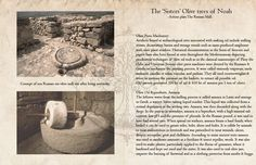 The olive oil making and maintenance techniques at the time of the Romans.  http://www.SistersOliveOil.com