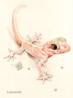ソメワケササクレヤモリ Lizards, Reptiles, Creatures, Artwork, Pictures, Animals, Inspiration, Art Work, Photos