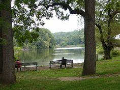 Memorial Grove in Van Cortlandt Park