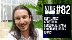 Vlog Diário #82 - Reptilianos, Construir Egrégoras, Magia Enochiana, Hor...