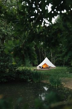 Open Fires, Wren, Outdoor Spaces, Coffee Cups, Gazebo, Outdoor Structures, Photo And Video, House Styles, Simple Things