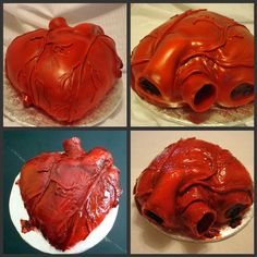 Human Heart - So this is a cake for a Med student, Of course she is currently taking anatomy so why not?! Originally I just covered it in fondant as you can see , but then it wasn't realistic enough to serve the purpose...so..lub dub lub dub....haha Fondant, and Piping gel. Thanks everyone for looking!!!