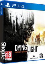 Dying Light, PS4, WARNER BROS