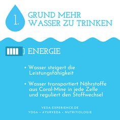 Wasserkur mit HydraMax Ayurveda, Lunge, Water Cycle, Transportation, Drinking Water, Metabolism
