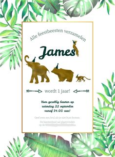 Kids Fun, Cool Kids, Jungle Party, Wild Ones, 4th Birthday, Party Time, First Birthdays, Invitations, Creative