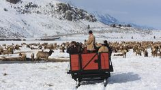 Top 10 sleigh rides in North America