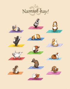 Забавные морские свинки в иллюстрациях Lesley DeSantis - Ярмарка Мастеров - ручная работа, handmade
