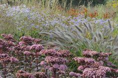 Hauser Wirth garden Arthur Road Landscapes