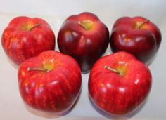 Red Apples Fruit Artificial Faux Staging Prop Decor Craft Realistic Lot of 5