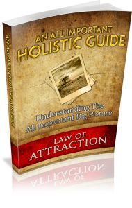 Holistic Guide - Law of Attraction Series