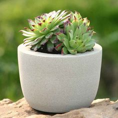 Image of Crucible Planter small