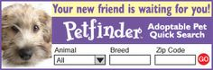 Search for a pet near you or help others find homes by adding this free adoptable pet widget to your website!